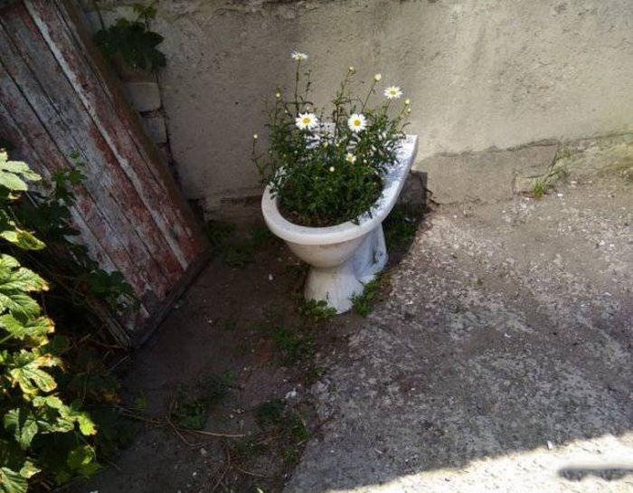 russia - Plant