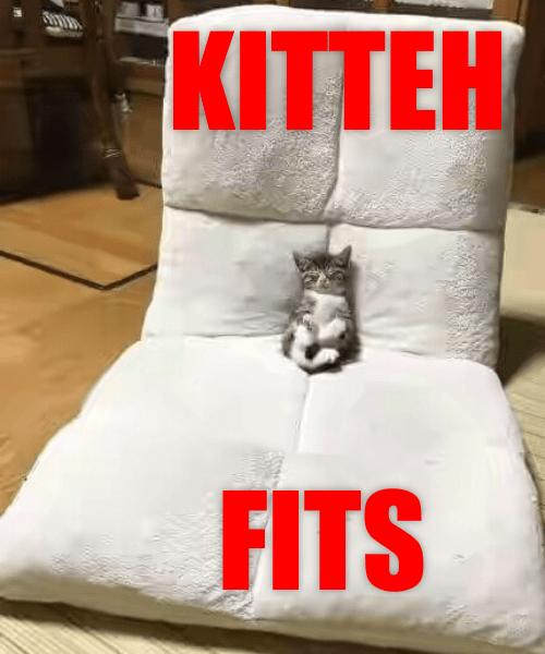 Furniture - KITTEH FITS