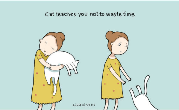 Cartoon - Cat teaches you not to waste time JAY LING VISTOV