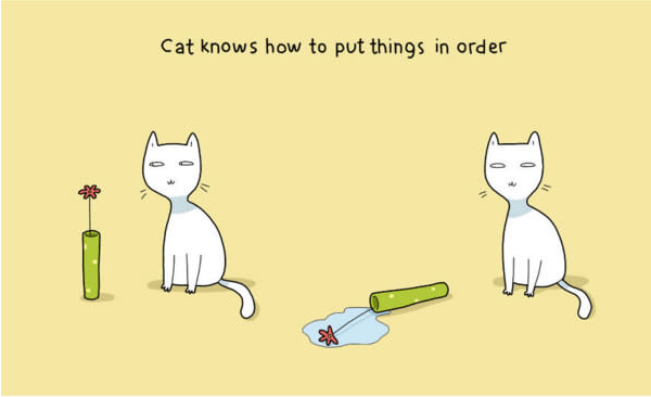 Cartoon - Cat knows how to put things in order