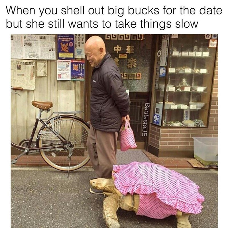 Picture of old man walking with turtle wearing a pretty pink dress and caption about how it feels when you shell out big bucks for the date but she still wants to take things slow.