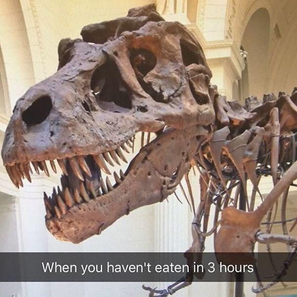 Dinosaur - When you haven't eaten in 3 hours