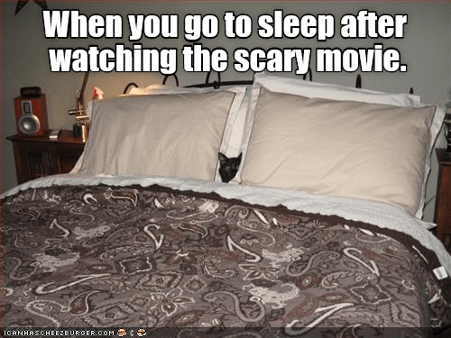 Cat meme about going to sleep after a scary movie with cat hiding behind the pillows