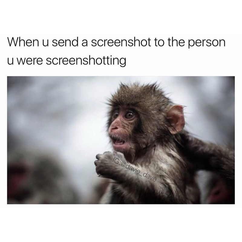 Funny meme about when you're screen shotting text and then you send the screen shot to the person you were screenshotting, photo of monkey.