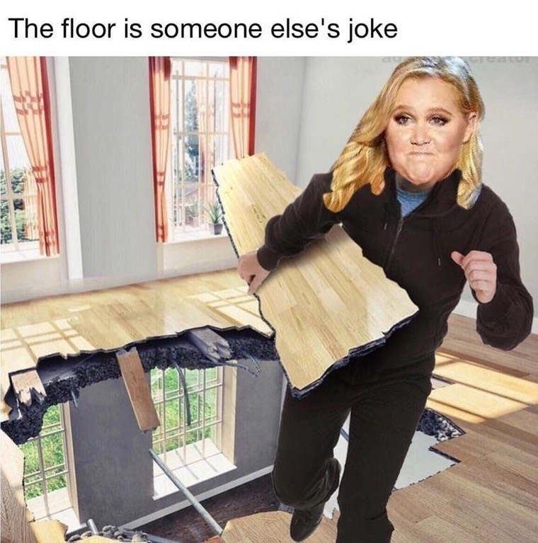Funny floor is lava themed meme, but the floor is stolen jokes and Amy schumer is stealing the floor.