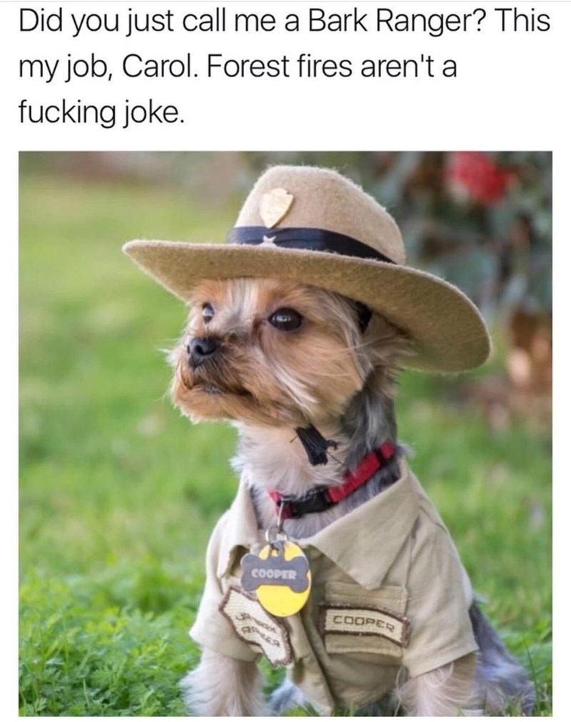 "Funny meme of dog in a park ranger uniform, being mad at a woman for calling him a ""bark ranger"" - dog pun."
