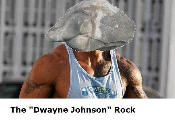 "Muscle - SHNGYM The ""Dwayne Johnson"" Rock"