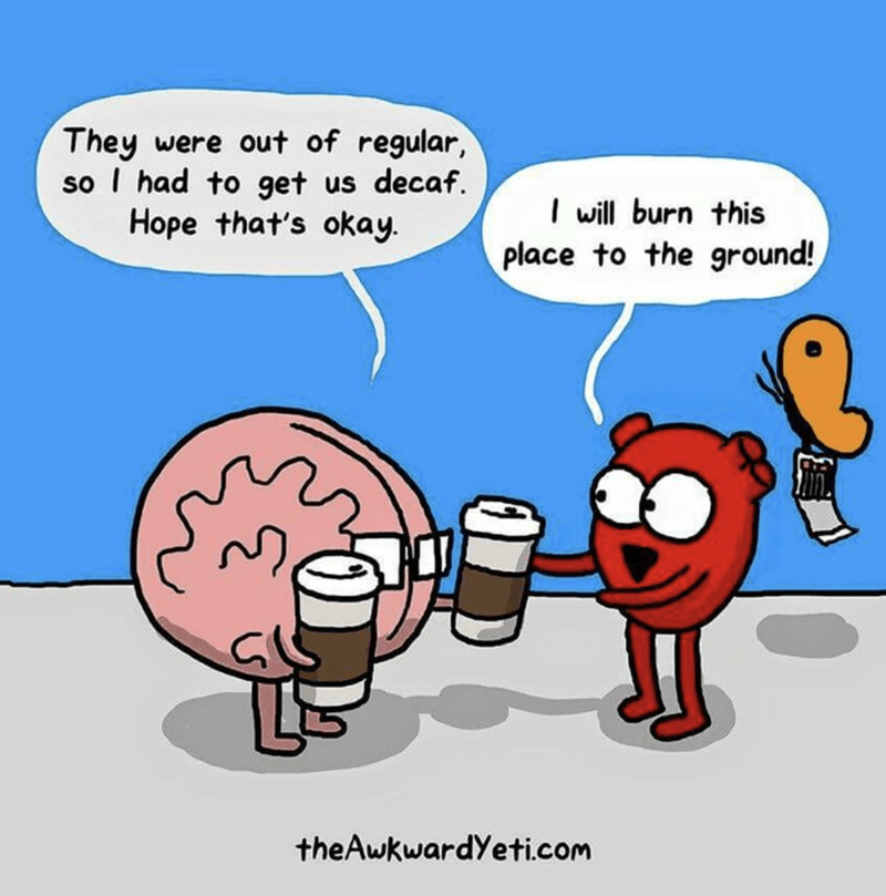 Brain apologizing for getting decaf because they were out of regular and Heart is ready to burn the whole place to the ground.