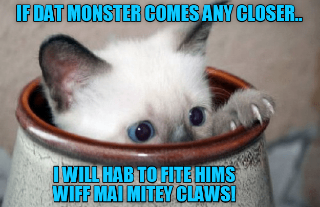 Cat - IF DAT MONSTER COMES ANY CLOSER.. IWILL HAB TO FITEHIMS WIFF MAI MITEY CLAWS!