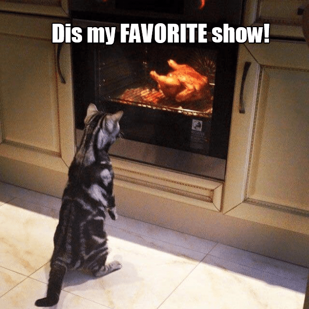 Heat - Dis my FAVORITE show!