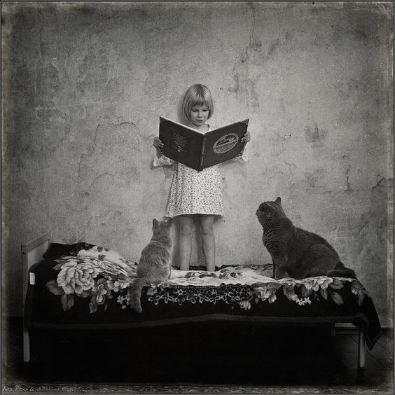 Andy Prokh black and white photo of girl reading cats a book, standing on the bed.