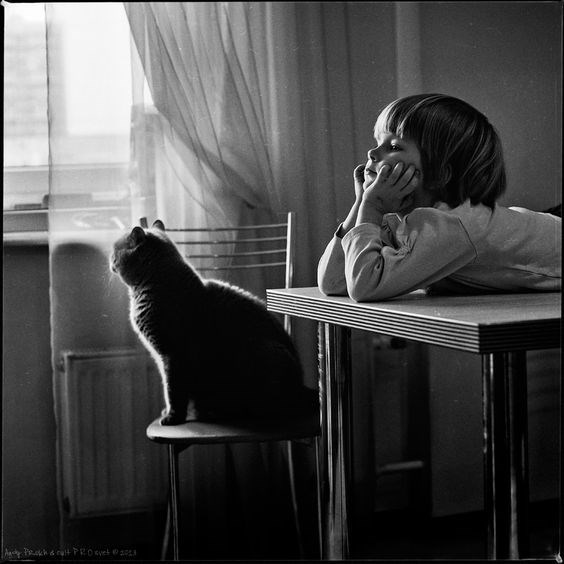 Andy Prokh photo of cat and girl staring out the window, bored.