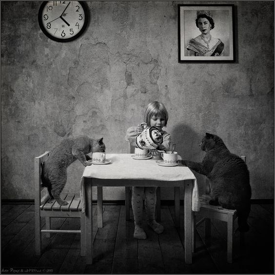Andy Prokh black and white photo of girl having tea party with two cats.