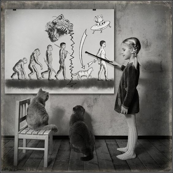 Black and white pics of girl teaching cat Darwinism with a funny cat twist by Andy Prokh