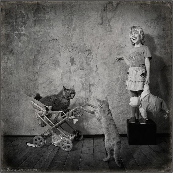 Andy Prokh b&w of cats playing dolls with each other as girl laughs and looks on.