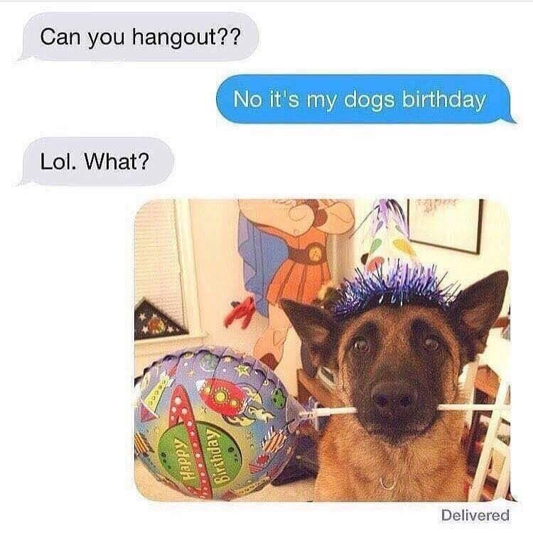 Funny meme where someone asks their friend to hang out they say they can't because it's their dog's birthday, photo of a dog in a party hat.