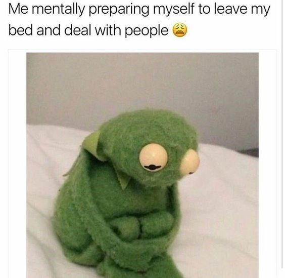 Meme of Kermit the Frog in the fetal position captioned as how to mentally prepare yourself to leave the bed and start dealing with people.