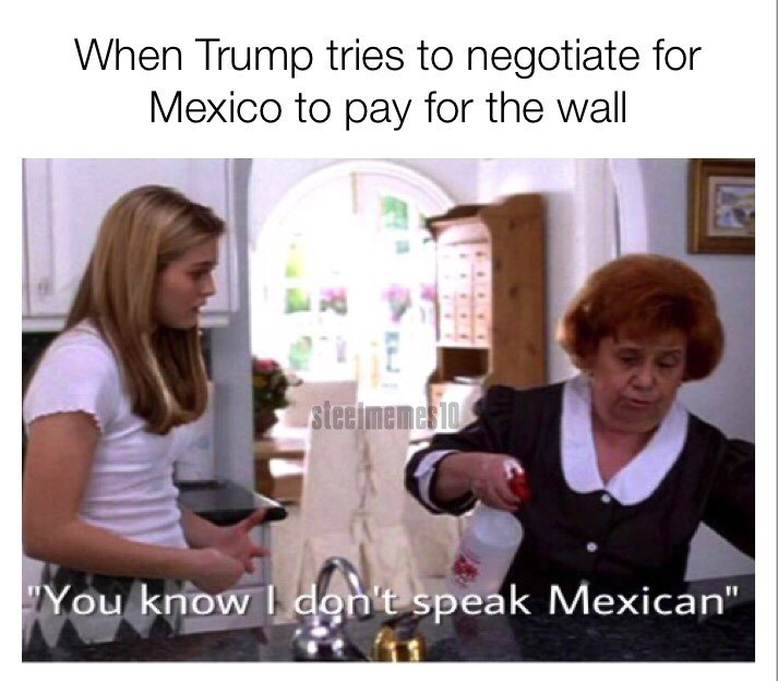 Text - When Trump tries to negotiate for Mexico to pay for the wall steelmemesio You know don't speak Mexican""