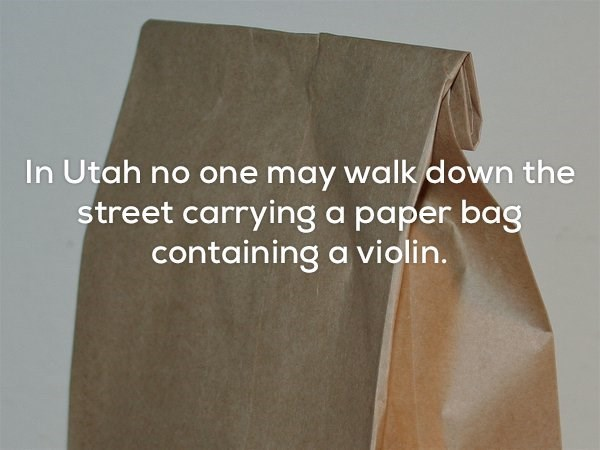 Product - In Utah no one may walk down the street carrying a paper bag containing a violin.