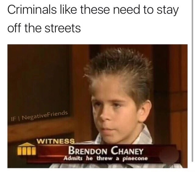 Meme of Brendon Chaney, a kid who admits he threw a pinecone