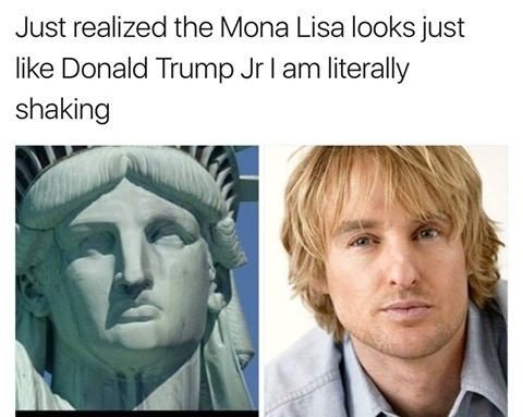 Funny meme that says that Donald Trump looks just like the Statue of Liberty, but it's a photo of the Statue of Liberty next to Owen Wilson.