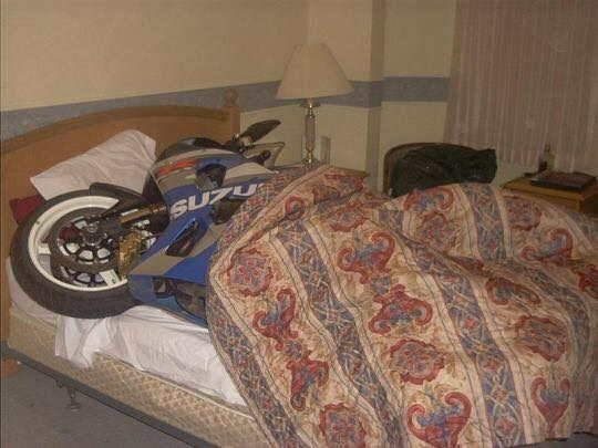 Motorcycle sleeping in bed.