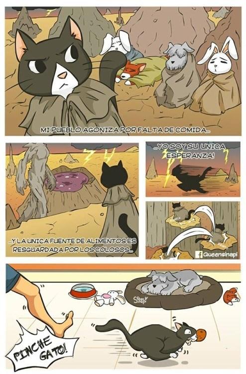 vineta de gato consiguiendo comida