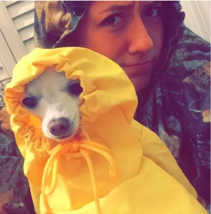 Marissa Hooper and Chihuahua Dixie