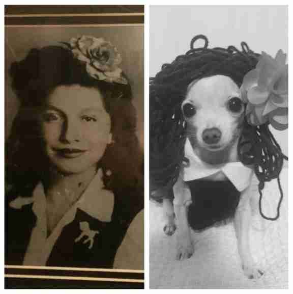 Old school black and white photos redone using Dixie, the family dog.