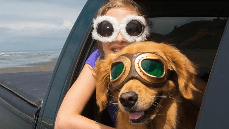 Picture of girl and dog with head out the window and wearing goggles