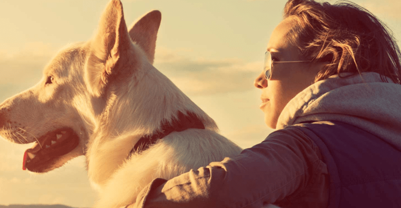 Woman and dog staring into the horizon, last image of list for Paws Like Me.