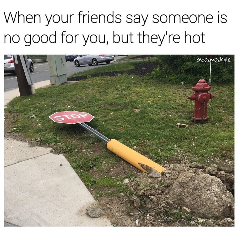 Meme of knocked over stop sign and caption about when your friends say someone is no good for you but they are hot.