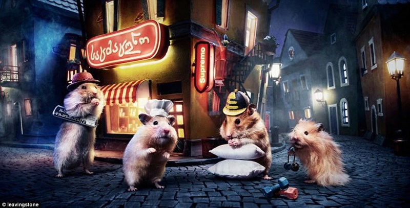 Hamsters in the streets on Hamsterville at night.
