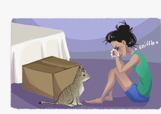 Always count on cats comic girl crying with cat right next to her
