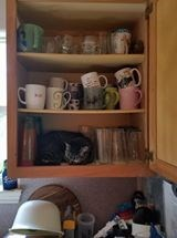 Cat in the cupboard so no dishes will be put away today.