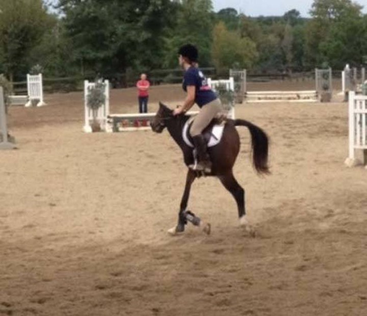 Person riding a short-horse that looks like that because of the panoramic pic