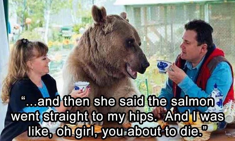 Bear having morning conversation with a couple