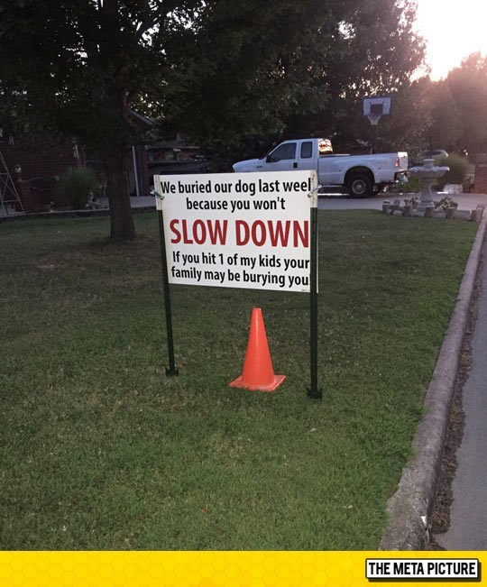 Sign saying to slow down because a speeder killed their last dog.