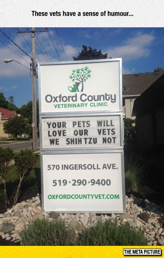 Very creative sign for a Veterinary Clinic