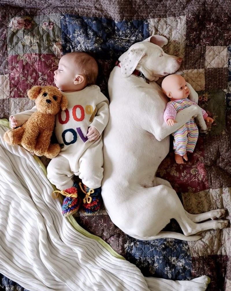 Nora and Archie cuddling up with dolls and stuffed animals