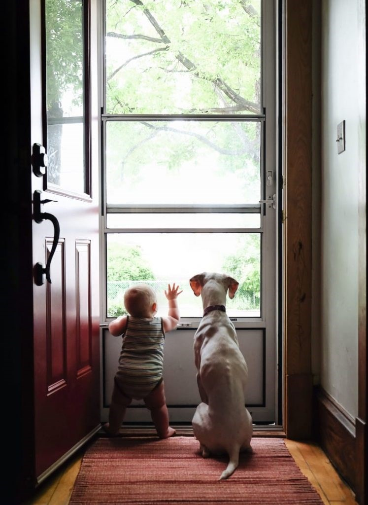 Archie and Nora looking out the front door in wonder and amazement.