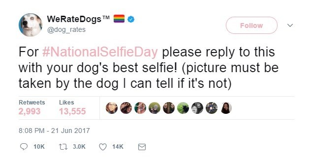 We Rate Dogs asks twitter followers to send in dog selfies for national selfie day.