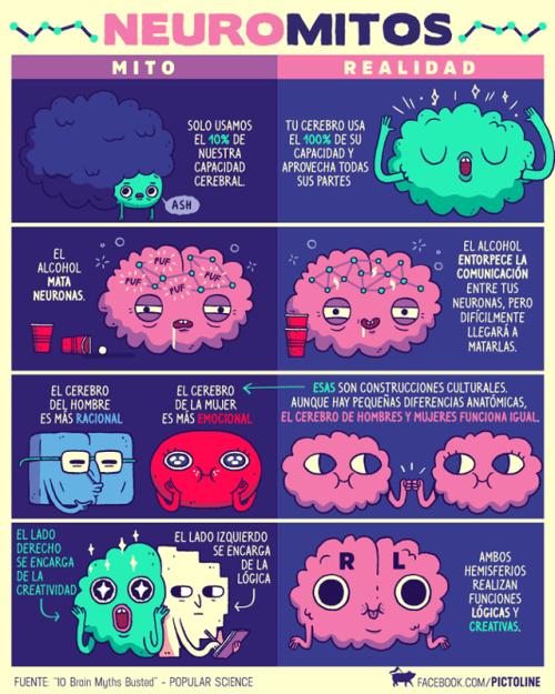vineta que explica algunos mitos que se tienen del cerebro