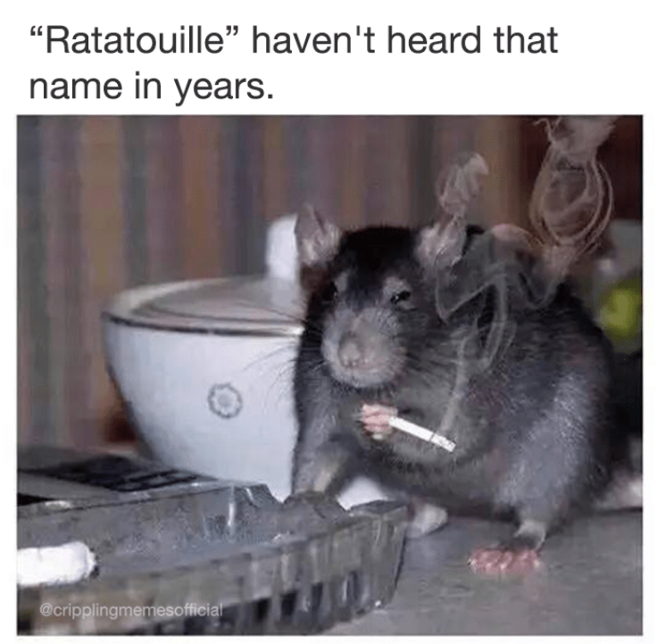 "Funny meme of a rat smoking a cigarette, says ""Ratatouille? Haven't heard that name in years."" A reference to the Disney film of the same name."