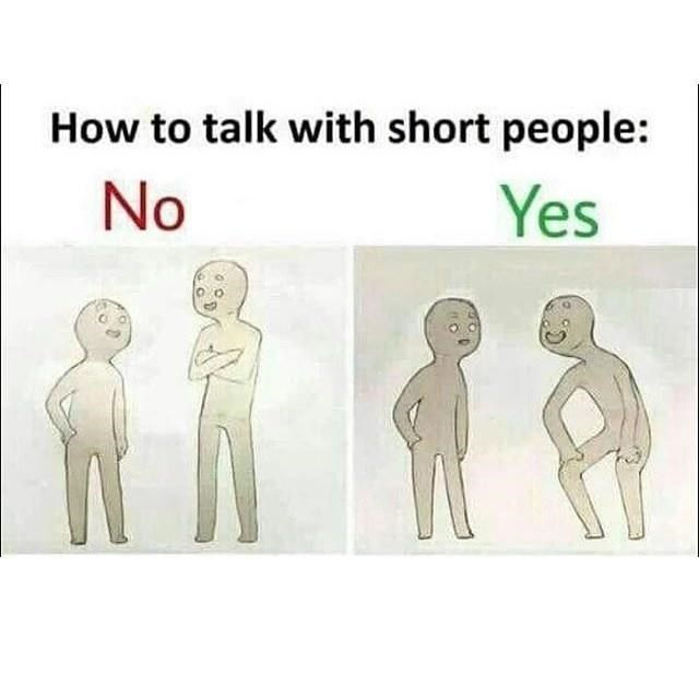 Text - How to talk with short people: No Yes