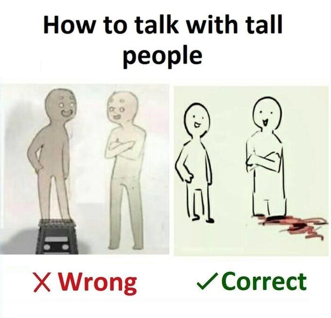 Text - How to talk with tall people X Wrong Correct