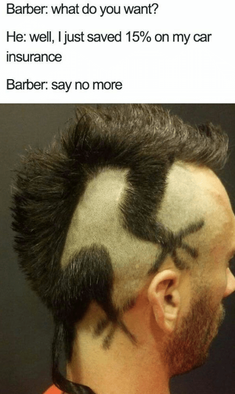 Haircut that looks like Gecko on his head