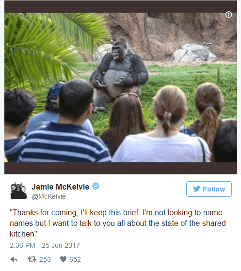 TED Talk gorilla meme about the shared kitchen