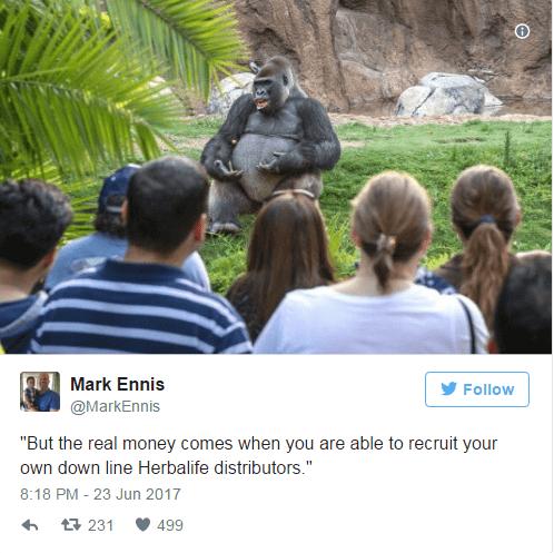 Herbalife TED Talk gorilla meme