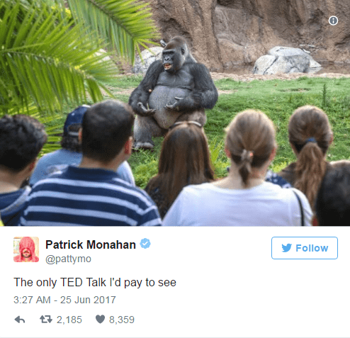Tweet by Patrick Monahan of the TED Talk gorilla lecturer